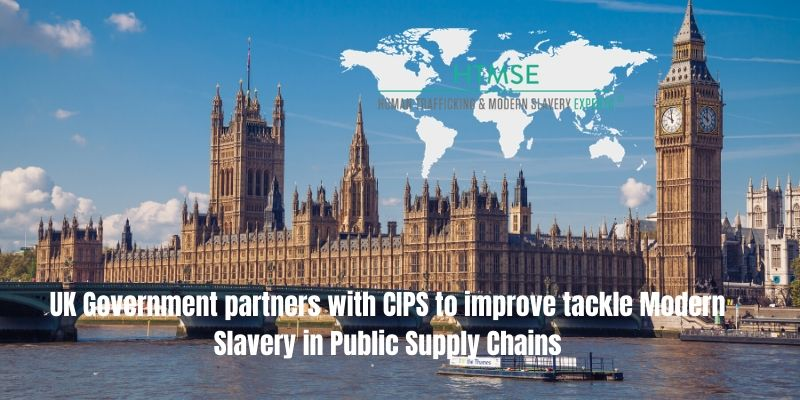 Public Sector Supply Chains and Government Compliance